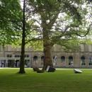 foto-dordrechts-museum
